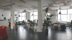 les plantes contribue à diminuer le stress au bureau